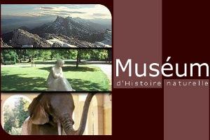 Museo de Historia Natural en Grenoble